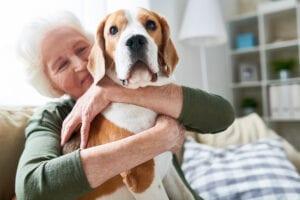 Caregiver Kentwood, MI: Seniors and Dogs
