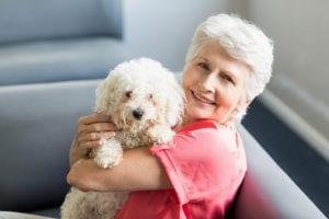 Elder Care in Rockford MI: Keeping Pets Safe During Thanksgiving